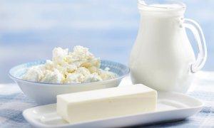 Молочные продукты из Казахстана спустя месяц вернутся на прилавки омских магазинов
